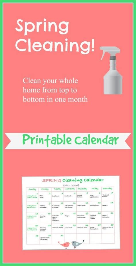 images  spring cleaning  pinterest