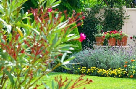 Der Garten Im August by Der Garten Im August Farbenfrohe Bl 252 Tenpracht Myhammer