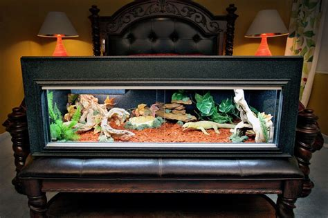 what kind of heat l for bearded dragon what type of habitat cage is great for your bearded dragon
