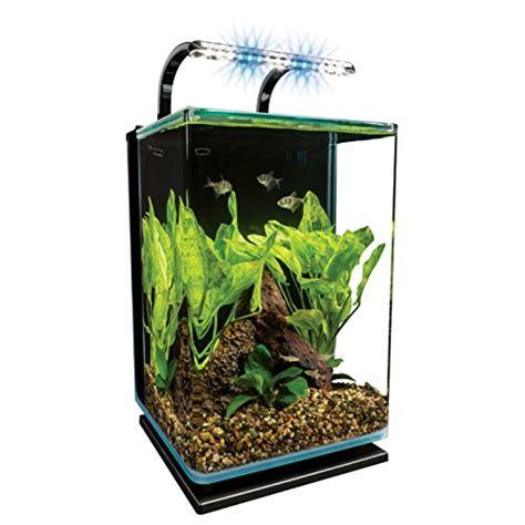 cool fish tanks aquariums webnuggetz