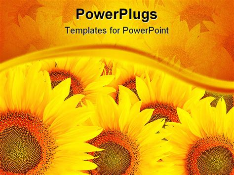 sunflower template   clip art  clip