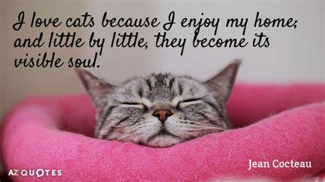 jean cocteau quote  love cats   enjoy  home