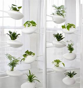Modern hydroponic systems for the home and garden for Hydroponic indoor plants