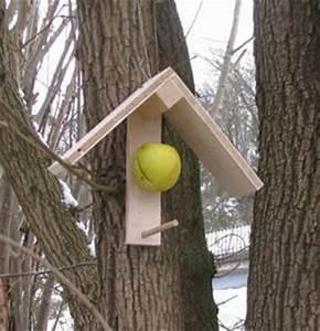 Vogelfutterspender Selber Bauen : vogelh uschen ~ Whattoseeinmadrid.com Haus und Dekorationen