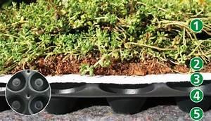 Extensive Dachbegrünung Aufbau : extensive dachbegr nung produkte f r dachbegr nung kunstrasen schwimmteichbau ~ Whattoseeinmadrid.com Haus und Dekorationen