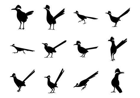 roadrunner bird silhoutte vector pack