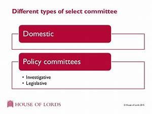 House of Lords Select Committees parliament explained ...