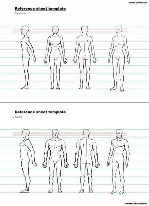 character design sheet template google search anatomy