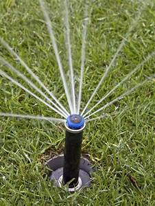 6 Easy Lawn Care Watering Tips | Trusper