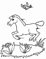 Coloring Horse Running Pages Bird Flying Horses Printables Printactivities Print Animals Popular sketch template