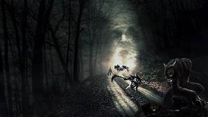 Road deaths in the dark forest wallpapers and images ...
