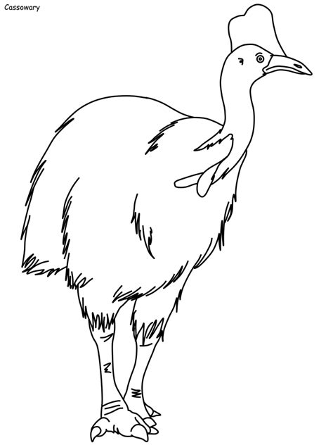 Coloring Templates by Bird Coloring Pages