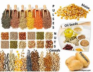 3 Forms of Carbohydrate Rich Food: Know the Sources of Energy