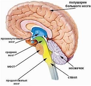Лекарственное лечение артериальной гипертензии