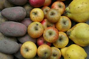 Gemüse Richtig Lagern : obst und gem se richtig lagern livona der bio blog ~ Whattoseeinmadrid.com Haus und Dekorationen