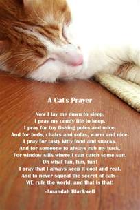 poems about cats quotes and poems about cats quotesgram