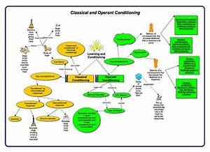 Psychology  Classical And Operant Conditioning Study Guide