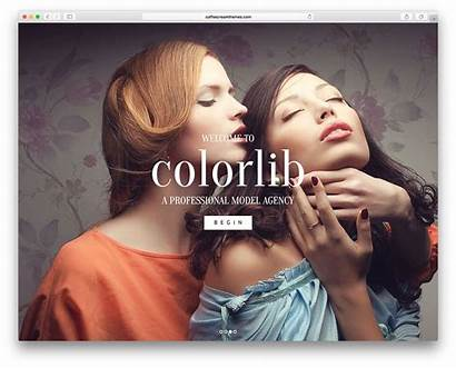 Wordpress Themes Agency Theme 2021 Colorlib Collections