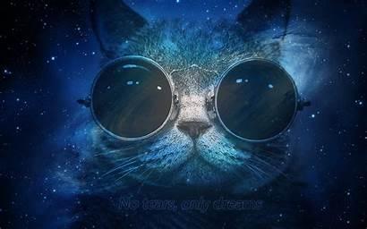 Space Cat Deep Iphone Wallpapersafari Hipster Morpheous