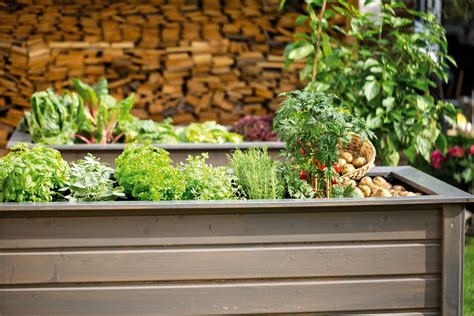 Bepflanzen Eines Hochbeetes by Hochbeet Bepflanzen Tipps F 252 R Gem 252 Se Blumen Obi