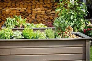 Hochbeet Blumen Bepflanzen : hochbeet bepflanzen tipps f r gem se blumen obi ~ Watch28wear.com Haus und Dekorationen