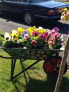 My, Wheelbarrow, With, This, Years, Amazing, Pansies, Ud83d, Udc95
