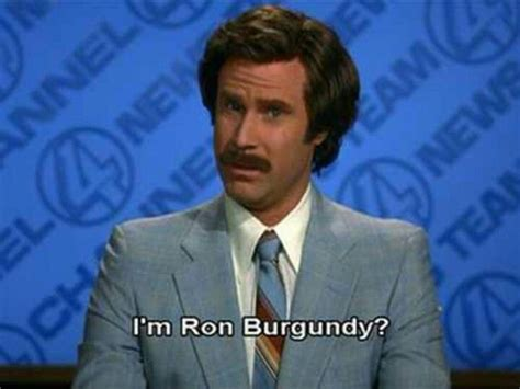 Anchorman I L Quote by 17 Best Images About I M Burgundy On