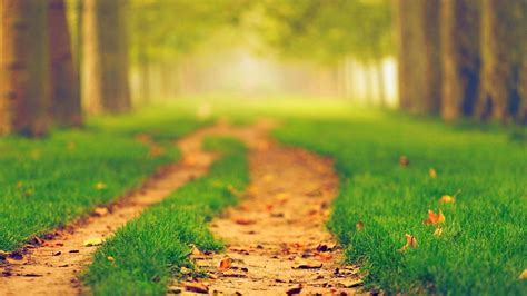 Car Wallpaper Hd 1920x1080 Nature Png by Wallpaper 1920x1080 Px Blurred Nature Path 1920x1080