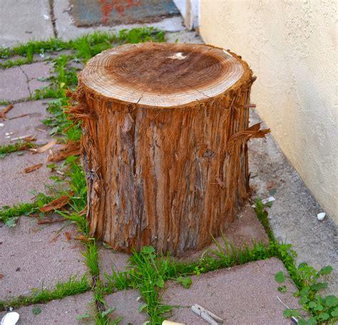 restylerestorerejoice diy tree stump side table