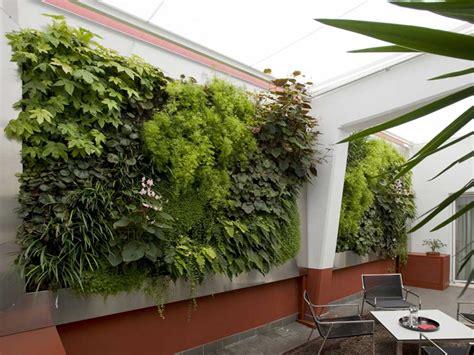 giardino interno casa tropici domestici la rivoluzione verde in casa la casa
