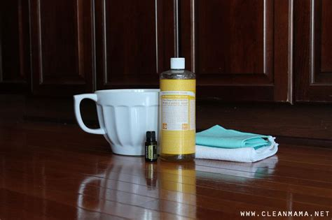 kitchen cabinet cleaners 1000 ideas about cabinet cleaner on kitchen