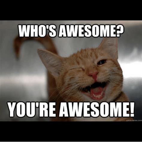 Your The Best Meme - 25 best memes about whos awesome youre awesome whos awesome youre awesome memes