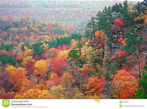 Autumn Color In The Ozarks Royalty Free Stock Photos