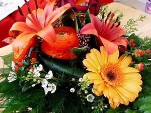 Bouquet Pas Cher : des bouquets de fleurs pas chers ~ Melissatoandfro.com Idées de Décoration