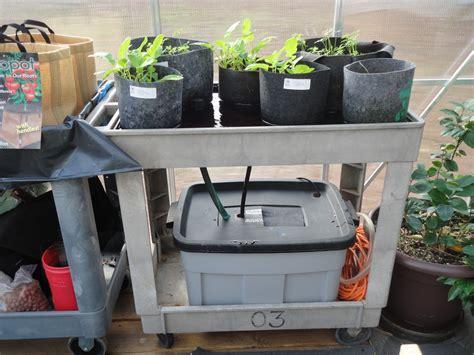 flood and drain table alpha hydroponics garden supply inc