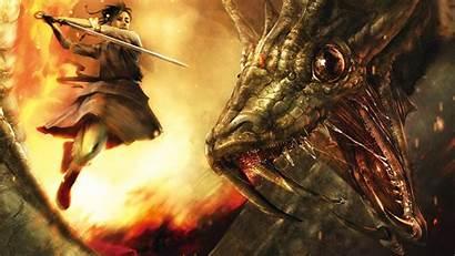 Dragon Fighting Warrior Sword Fight Rga Wallpapers