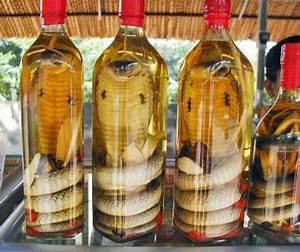 Snake Wine???