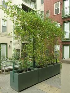 les 11 meilleures images du tableau brise vue paravent With brise vue avec jardiniere 4 jardiniare delta rectangle jardinchic
