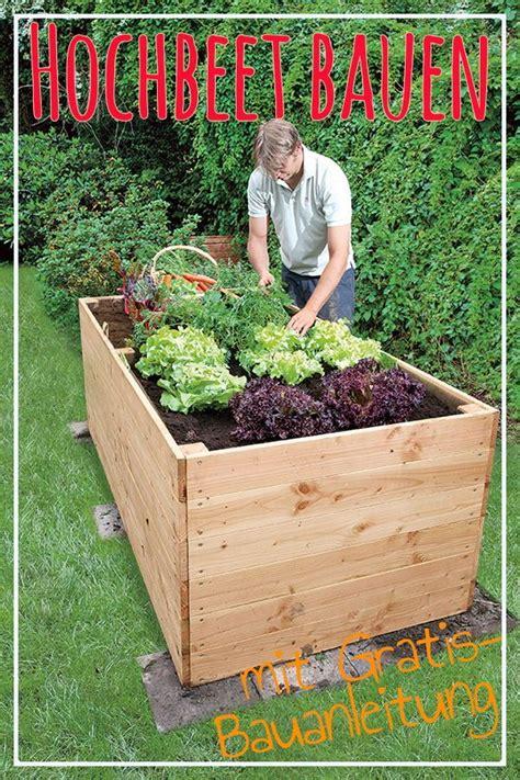 Bepflanzen Eines Hochbeetes by Hochbeet Hochbeete Bauen Und Bepflanzen Hochbeet