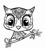 Cute Animal Mandala Coloring Pages Animals Adult Owl Drawings Simple Drawing Baby Super Print Colouring Printable Give Kid sketch template