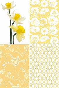 240 best images about Color My Walls on Pinterest