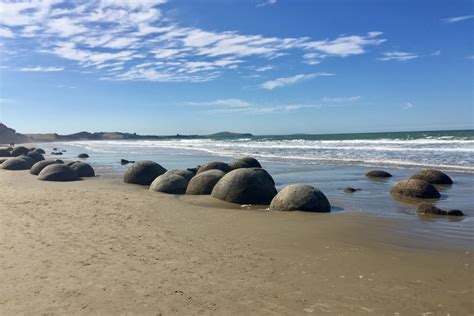 Nz South Island 4 Oamaru Dunedin And Otago Peninsula 3