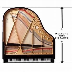Baby Grand Piano Dimensions | Euro Pianos