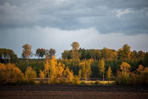Ceturtdiena būs lietaina; Latvijai tuvojas ciklons - nra.lv
