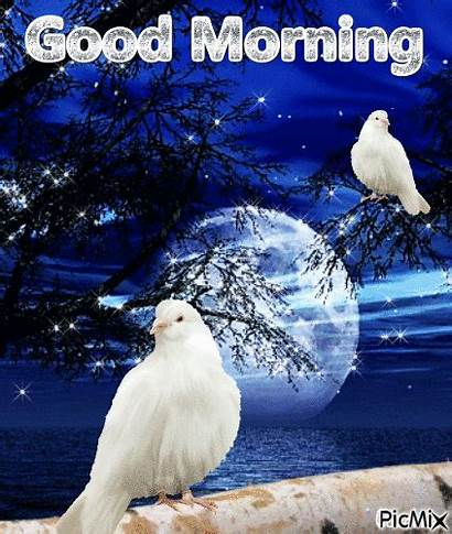 Picmix Morning Img1