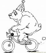 Coloring Bear Pages Ramp Coloringpages101 Bikes Template Bmx sketch template