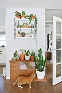 decorez avec les plantes grasses d39interieur With affiche chambre bébé avec petit pot de fleur interieur
