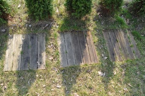Gehwegplatten Streichen gehwegplatten streichen gehwegplatten streichen sf birkelbach