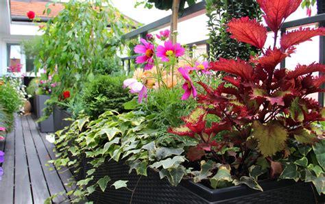Kleinen Balkon Bepflanzen by Bildquelle 169 Tatiana Mihaliova