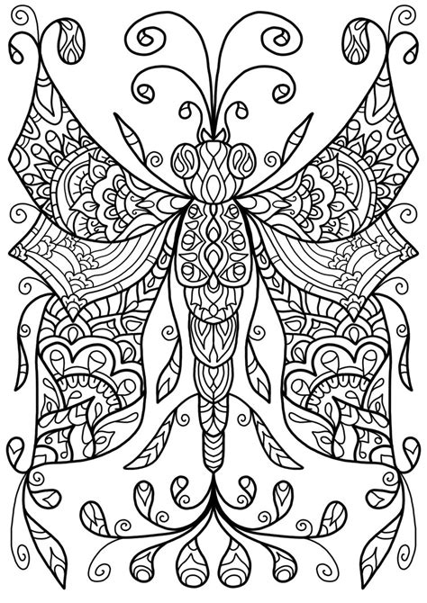 colouring page dragonfly   welshpixie